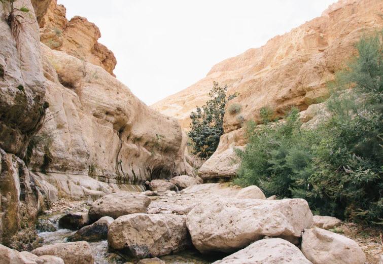 Genesis Chapter 13 & 14 – Pastor James